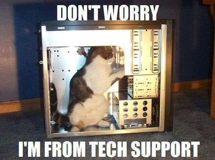 Réseautique CAT