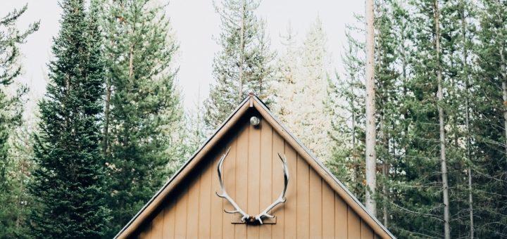 header image 1501607728 720x340 - Petit guide d'entretien pour toitures